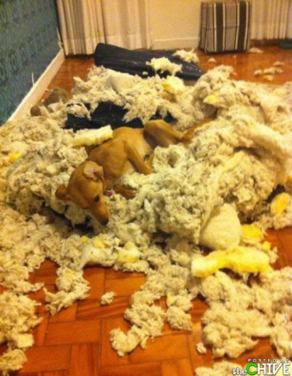 Image result for making a mess