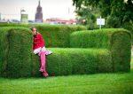 Hedge bench