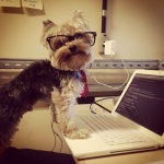 "Tech dog, ""Did you try restarting it?  Woof!"""