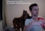dog-sniff-dog-world-29