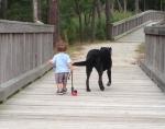 life-tough-get-dog-171