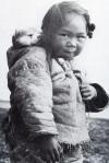 Inuit dog back pack