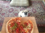 life-ruff-get-dog-2