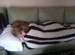 life-tough-get-dog-311 (2)