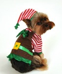 elf-costumes-for-dogs