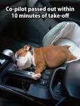 Driving makes him sleepy