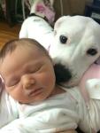 Baby sitter
