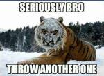 Short snowball fights...
