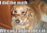018-dog-memes