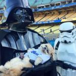 The Dark Side has puppies!