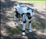 Stormtrooper Scout Dog