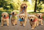 mom-dog-with-pups1 - Copy